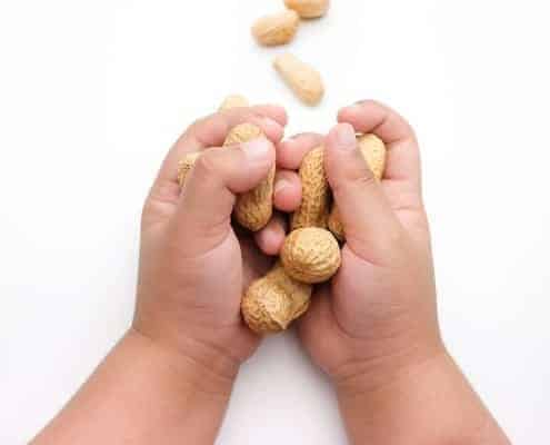 baby hands holding peanuts