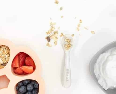 Yogurt Parfait Ingredients in Multiportions