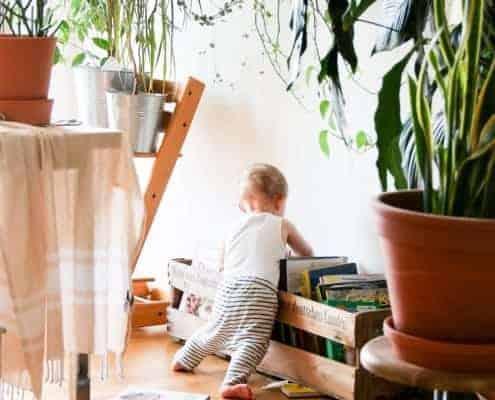 Baby touching books