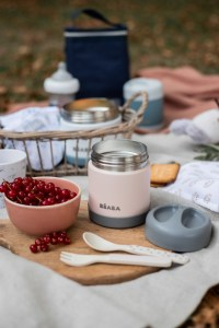 Stainless Steel Insulated Jar Rose